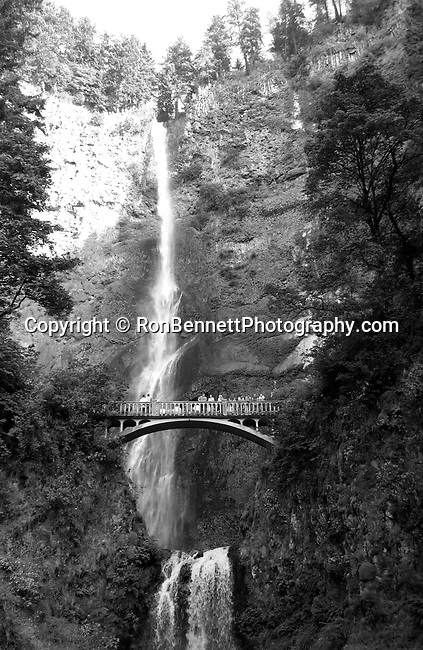 Multnomah Falls Oregon, Multnomah Falls Oregon,Multnomah Falls Bridal Veil Oregon, Bridal Veil, Oregon, Cascade Locks, Columbia River Gorge, Multnomah Falls 620 feet two drops, Multnomah Creek, Larch Mountain, cascade, Columbia River Highway, Spectacular rugged Oregon, Douglas fir forest with ferns in foreground Oregon, moss, ferns and fir trees,  Oregon, state of Pacific Northwest, Pacific coast, Multnomah Falls is a waterfall on the Oregon side of Columbia River Gorge east of Troutdale, Oregon, Multnomah Falls on Columbia River Gorge near Troutdale Oregon, Multnomah falls, Multnomah falls 620 feet, Bridal Veil Oregon, tallest waterfall in state of Oregon, Columbia River Highway, Spectacular rugged Oregon, photographs fulfill a creative vision of artist,  Art Photography, Copyright RonBennettPhotography.com ©