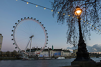 The London Eye at night seen from Embankment, London, England