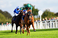 Winner of The Weatherby's General Stud Book Online Handicap Stakes   Ayrad ridden by Andrea Atzeni and trained by Roger Charlton  during Afternoon Racing at Salisbury Racecourse on 4th October 2017