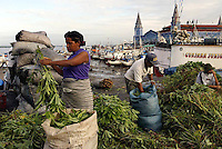 Brazil,Belém : 24/04/2006 - People working with cassava leaf at the most fascinating places in Belém do Pará, on the Amazon delta, is the river market called Ver-o-Peso (Check-the-Weight)