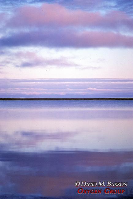 View Of Arctic Ocean