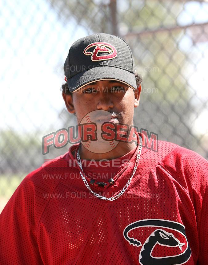 Raywilly Gomez / Arizona Diamondbacks 2008 Instructional League..Photo by:  Bill Mitchell/Four Seam Images