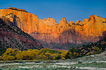 Sunrise light on the West Temple and the Towers of the Virgin, Zion Canyon, Zion National Park, Utah