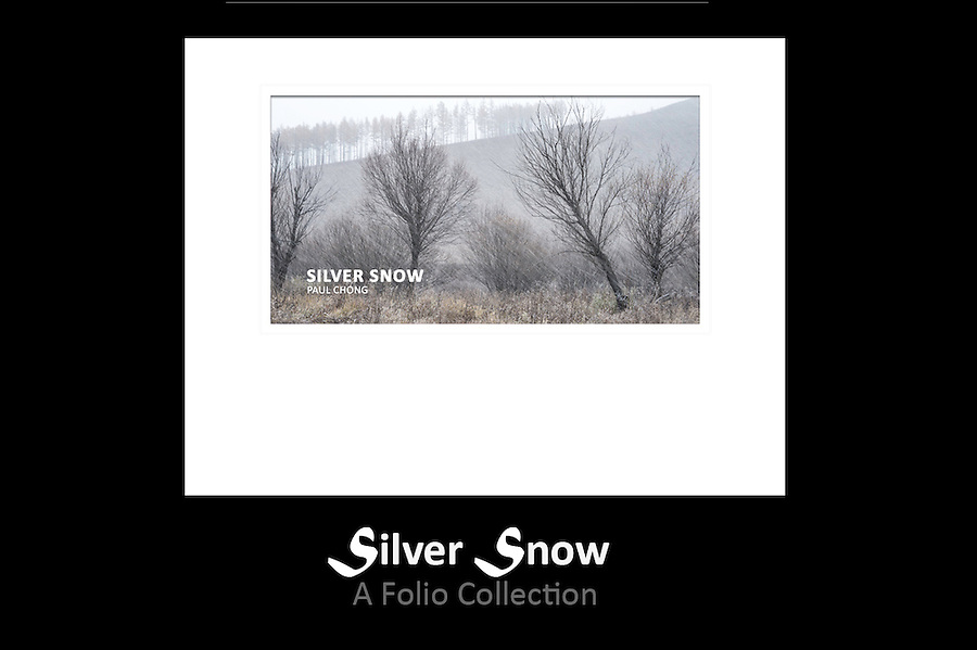 Folio Title: Silver Snow<br />