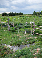 Farm land near the People's Ditch in San Luis, Colorado, Monday, August 17, 2015. The People's Ditch is the oldest continually used ditch in Colorado. Joe's family has used the ditch for five generations. The People's Ditch was initially a shallow hand-dug irrigation channel. Later, oxen pulling a plow widened and extended the ditch. Operating under Water District 24 of Division 3, the People's Ditch holds the first adjudicated water rights in Colorado.