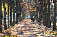 Along the Les Champs Elysees street park, tree lined allee, a couple walking in autumn Paris, France.