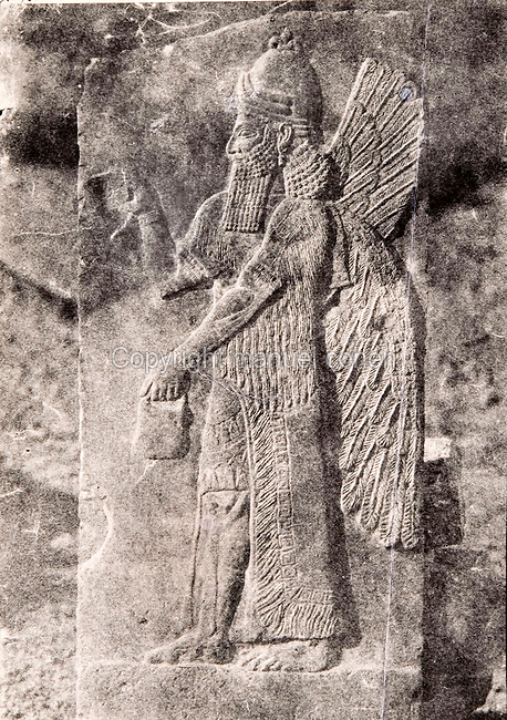 "EXCLUSIVE (b/w photo) Winged Genie, Palace of King Sargon II, Khorsabad, Iraq, Middle East. Lost at Shatt al-Arab in 1855. Picture by Victor Place...Additional info :..Khorsabad. Palais de Sargon II. (N.A. pl. 46 - 2 ""Divinité Ailée de Khorsabad"") Perdu Chatt el Arab 1855. Cliché V. Place."