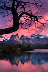 Lago Nordenskjold, Cuernos del Paine, Torres del Paine National Park, Chile<br />