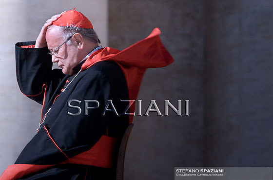 cardinale Renato Raffaele Martino Pope Benedict XVI  during his weekly general audience on October 27, 2010 at St Peter's square at The vatican.