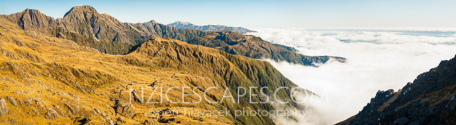 Afternoon views along alpine ranges toward Karangarua with Bruce Bay visible in distance under clouds, , Westland Tai Poutini National Park, UNESCO World Heritage Area, West Coast, New Zealand, NZ