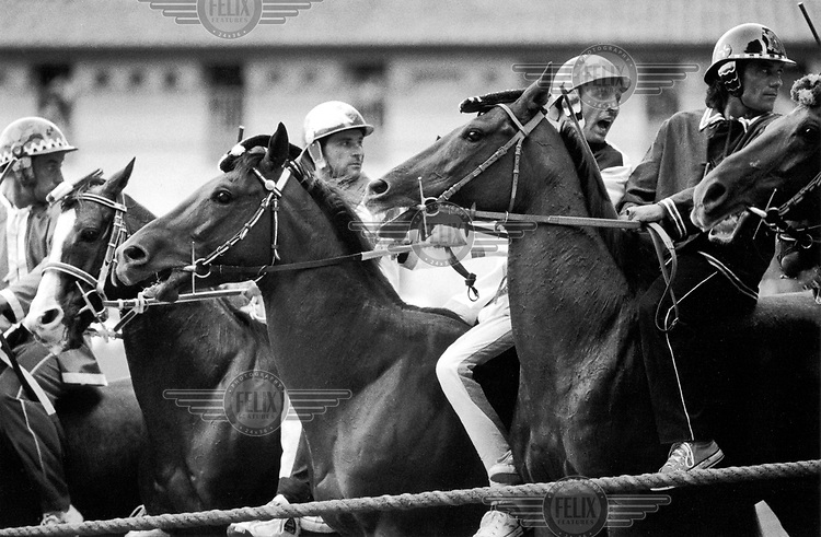 © Francesco Cito / Panos Pictures..Siena, Tuscany, Italy. The Palio. ..Horses jostling just before the beginning of the race...Twice each summer, the Piazza del Campo in the medieval Tuscan town of Siena is transformed into a dirt racetrack for Il Palio, the most passionately contested horse race in the world. The race, which lasts just 90 seconds, has become intrinsic to the town's heritage since it was first run in 1597.