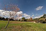 Israel, Jerusalem, Independence Park located at the center of Jerusalem<br />