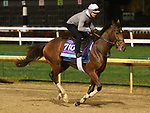 November 01, 2018 : Standard Deviation in preparation for the Breeders' Cup on November 01, 2018 in Louisville, KY.  Candice Chavez/ESW/CSM