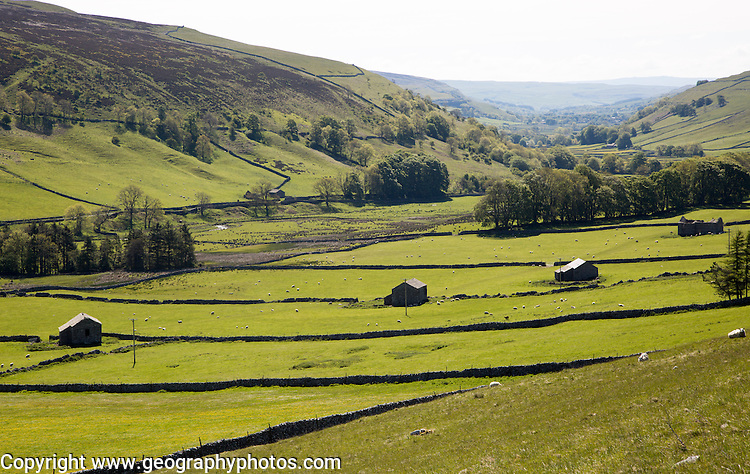 Stone barns and fields in Littondale, Yorkshire Dales national park, England, UK