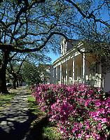 A suburban New Orleans street. Louisiana.