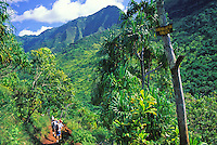 Hikers on the Kalalau trail venture toward Hanakapiai Valley on the last leg to Hanakapiai beach