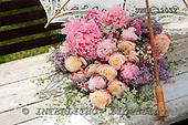 Carl, FLOWERS, photos, SWLA12032,#f# Blumen, Natur, flores, naturaleza