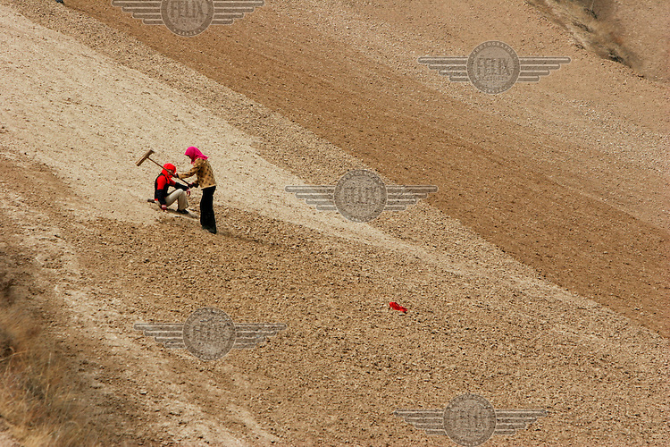 Two young Muslim women, who a members of the Dongxiang ethnic minority, work in a dry terrace field near Linfang Village.