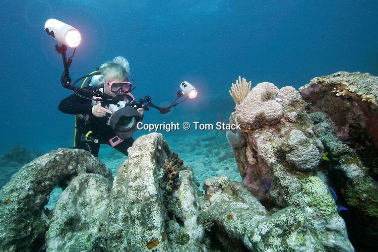 Underwater photographer on shipwreck, Florida Keys