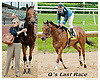 Unconditional Resq at Delaware Park on 6/6/13 - Q's last race before going to his next career
