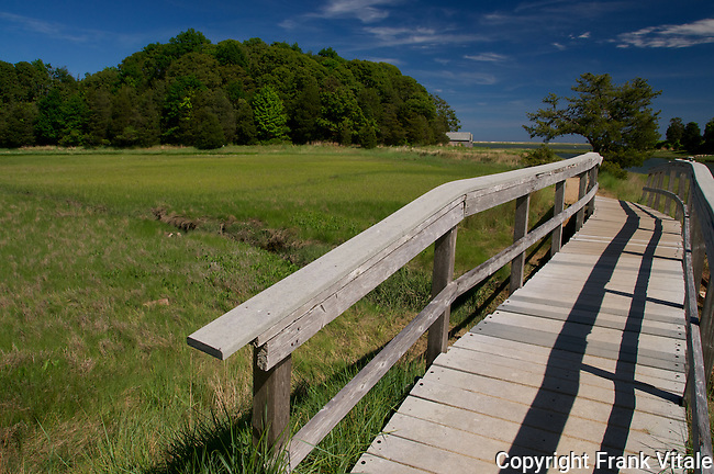 Wooden Bridge Along Nauset Marsh Trail, Cape Cod National Seshore, Eastham, MA