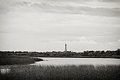 Blackpool Tower viewed from Marton Mere. Marton Mere is part of the original Body of Water that Blackpool takes it's name from. Black due to the Tannins, natural carried in the water.