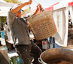 """Jose Gomez, of Antioch, prepares steamed crawdads at the """"Louisiana Cajun Lady"""" booth at the 29th annual Pittsburg Seafood and Music Festival in Pittsburg, California on Sunday, September 8th, 2013.  Photo/Victoria Sheridan"""