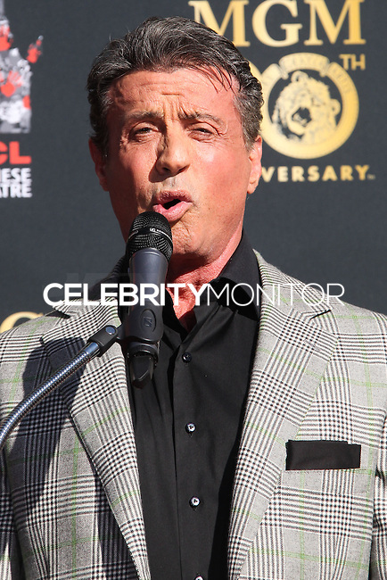 HOLLYWOOD, CA - JANUARY 22: Sylvester Stallone at the Metro-Goldwyn-Mayer 90th Anniversary Celebration held at the TCL Chinese Theatre on January 22, 2014 in Hollywood, California. (Photo by Xavier Collin/Celebrity Monitor)