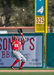 6 March 2016: Washington Nationals outfielder Chris Bostick pulls in a fly ball during a Spring Training pre-season game against the St. Louis Cardinals at Roger Dean Stadium in Jupiter, Florida. The Nationals defeated the Cardinals 5-2 in Grapefruit League play. Mandatory Credit: Ed Wolfstein Photo *** RAW (NEF) Image File Available ***