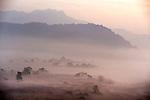 View at misty Morning Sunrise, Corbett National Park, Uttarakhand, Oldest National Park in India, named after Jim Corbett hunter turned conservationist, Northern India.India....