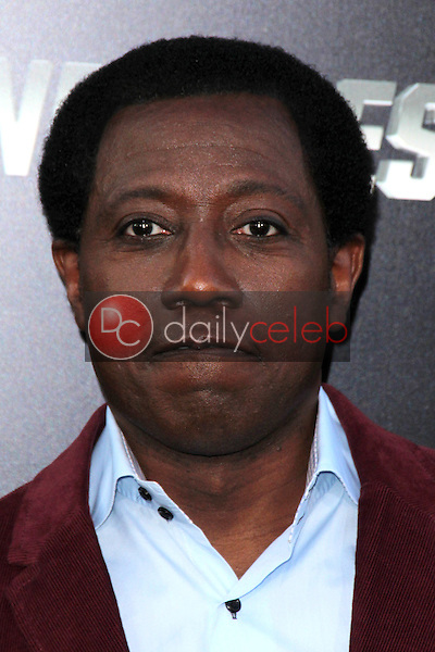 Wesley Snipes<br /> at &quot;The Expendables 3&quot; Los Angeles Premiere, TCL Chinese Theater, Hollywood, CA 08-11-14<br /> David Edwards/Dailyceleb.com 818-249-4998