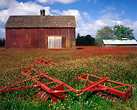 Barn and tiller with clover field in Washington County