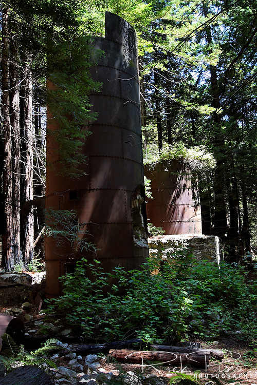 The 19th century lime kilns still stand in redwood forest of Lime Kiln State Park. Limestone was quarried in the nearby hills and brought to the kilns by pack mule. After the lime was baked the barrels were then slid down a wire to the beach and loaded on boats anchored in the nearby inlet. A short trail leads from the beach to the kilns.