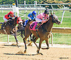 Cadillac Rose winning at Delaware Park on 9/23/15