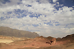Arava, the Mushroom & a half in Timna Valley