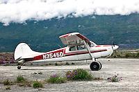 Small airplane with tundra wheels, Alaska