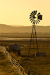 Aermotor windmill and fence line in setting sun, Goose Lake, Oregon.