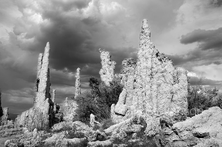 Tufa towers along the shorelline of Mono Lake. These towers are the result of minieral deposits around hydrothermal vents when this part of the shoreline was under water. As the lake level has dropped the towers have become exposed.