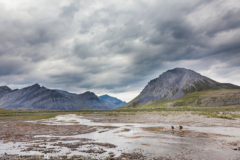 Hikers cross the Marsh Fork of the Canning River which comprises the western border of the Arctic National Wildlife Refuge in the Brooks Range mountains, Alaska.