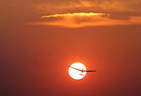 noch ohne Nummer/Boberg:DEUTSCHLAND, HAMBURG, BOBERG, 04.08.2004: Segelflugstart in den Abendhimmel, Segelflug, Segelflugzeug, ASK 13, Windenstart, Sonne, Abendhimmel, Abendrot, rot, Luftsport