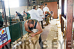 Shearers from across the country competed at this year's Sheep Shearing competitions in the Top of Coom in Kilgarvan.