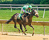 Harlington Romance winning at Delaware Park on 6/28/16