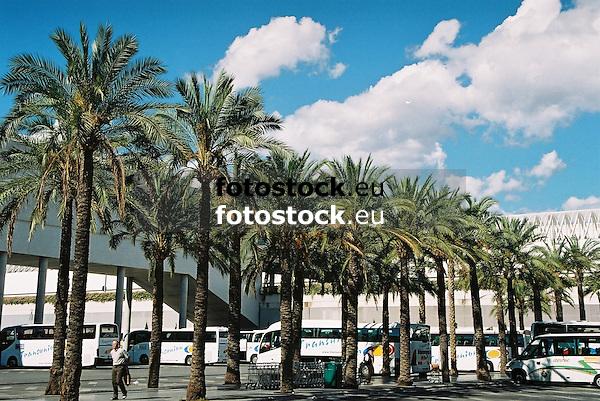 palm trees in front of the Airport Son San Joan (PMI)<br /> <br /> palmeras en frente del Aeropuerto de Son San Joan (PMI)<br /> <br /> Palmen vor dem Flughafen Son San Joan (PMI)<br /> <br /> 1840 x 1232 px<br /> 150 dpi: 31,16 x 20,86 cm<br /> 300 dpi: 15,58 x 10,43 cm<br /> Original: 35 mm