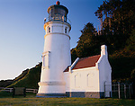 Siuslaw National Forest, OR      <br /> Heceta Head lighthouse under forested ridge of Heceta Head