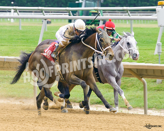 Forgotten Knot winning at Delaware Park on 6/27/16
