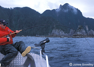 Fishing salmon in British Columbia