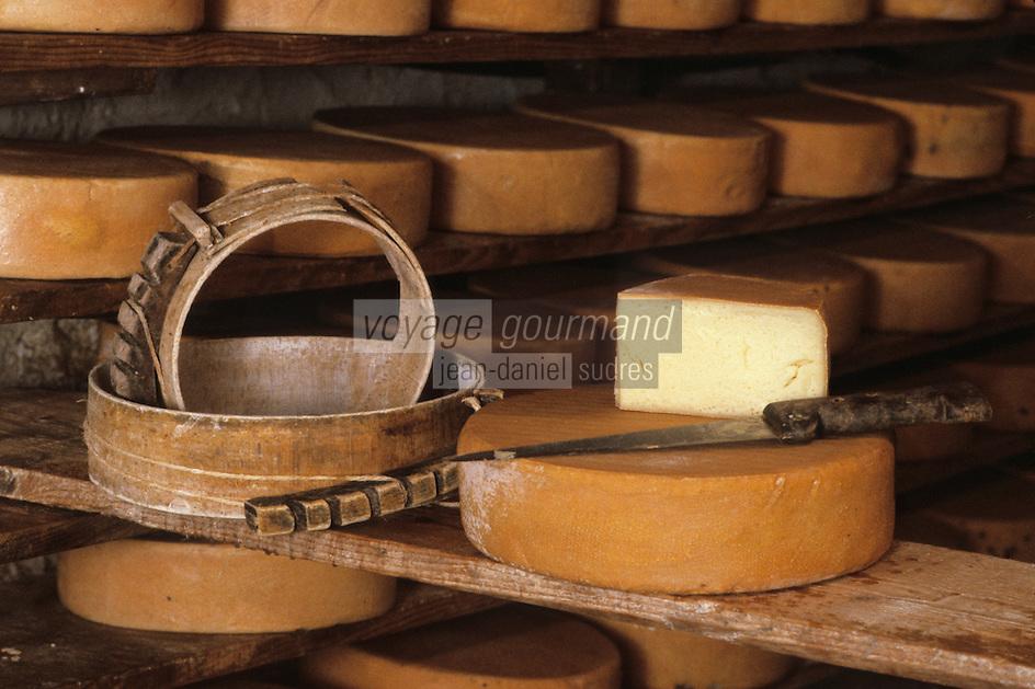 Europe/France/Midi-Pyrénées/09/Ariège/Env. de Castillon-en-Couserans/Ayet: Moule et fromage en cave à la fabrique de fromage de Bethmale