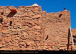 Raven on Hopi House, Mary Colter 1905, Grand Canyon Village, South Rim, Grand Canyon, Arizona