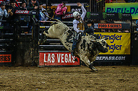 NOVA YORK, 06.01.2019 - PBR-NEW YORK - Montaria do PBR  (Professional Bull Riders) empresa norte-americana que promove competições internacionais de montaria em touros etapa  Nova York no Madison Square Garden neste domingo. (Foto: Vanessa Carvalho/Brazil Photo Press)