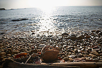 SEA_LOCATION_80133